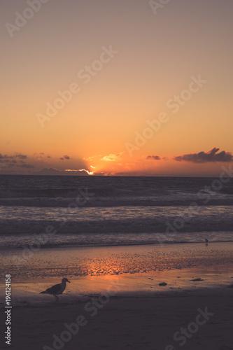 Staande foto Zee zonsondergang Sunset at the beach