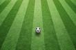 Sunny green football grass field with soccer ball.