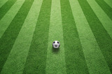Sunny green football grass field with soccer ball. - 196142964