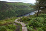 Hiking in Wicklow mountains national park - 196149752