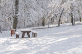 Wooden table and bench with recycle bin in the forest winter season