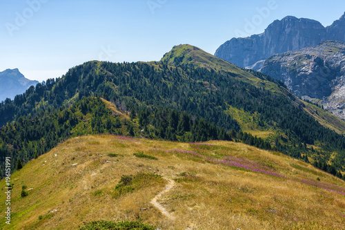 Narrow trail in the mountains