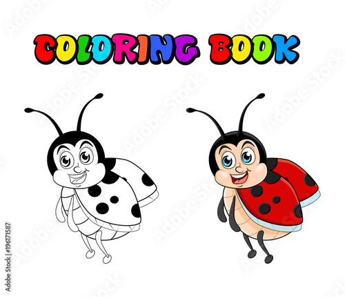 Ladybug cartoon coloring book isolated on white background