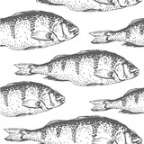 Vector illustration with sketches of fish. Hand-drawn black and white seamless background  seafood. Carp .