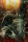 Deep dark green palm leaves pattern with bright orange sun flare effect. Creative layout, toned, vertical - 196183144