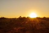 Sonnenaufgang im Tsavo Ost in Kenia