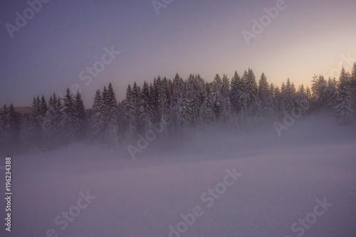 Zimowy śnieżny krajobraz