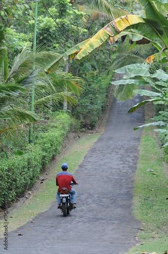 Staande foto Weg in bos Route balinaise