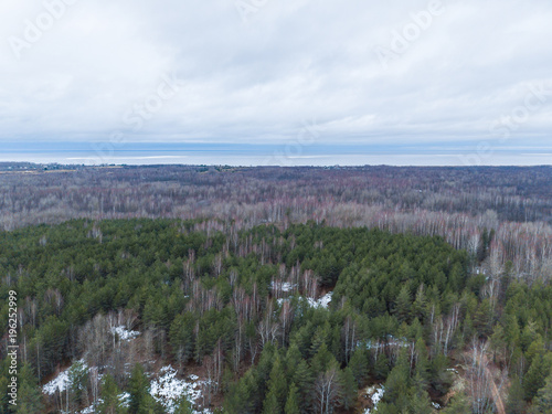 Deurstickers Wit View of the autumn forest in Karelia with quadrocopter