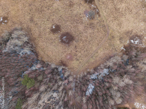 Foto op Canvas Cappuccino View of the autumn forest in Karelia with quadrocopter
