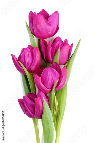 Bouquet of purple tulips isolated on white background
