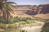 Wide view of canyon and cultivated fields and palms in Errachidia Valley Morocco North Africa Africa - 196265913