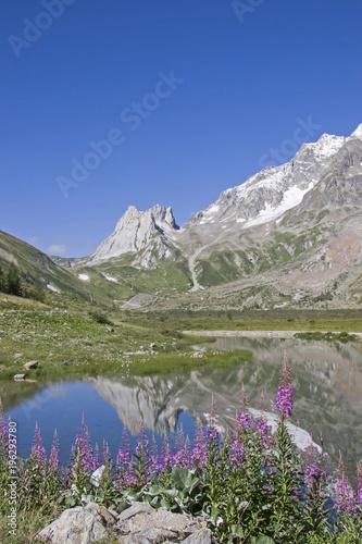 Im Val Veny am Monte Bianco