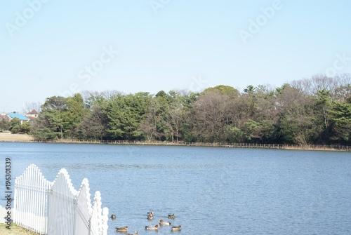 Aluminium Lichtblauw pond