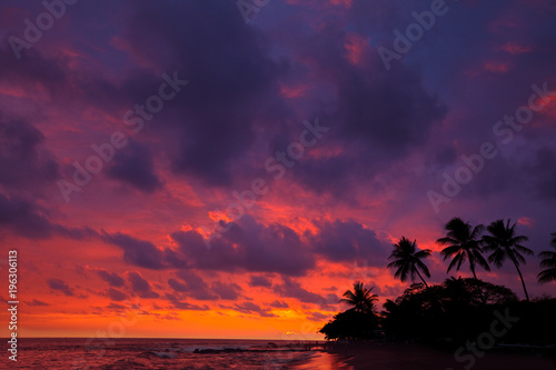 Aluminium Galyna A. Hawaiian beach