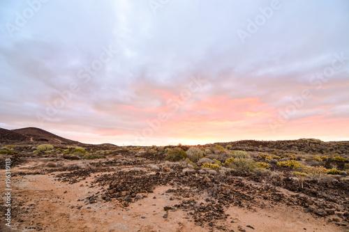 Fotobehang Zalm Dry Desert Landscape