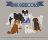 Dogs by country of origin. Greek dog breeds. Infographic template - 196319355