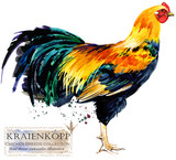Poultry farming. Chicken breeds series. domestic farm bird watercolor illustration