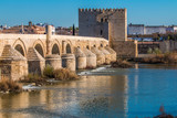 Córdoba. El puente