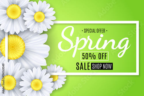 Spring sale banner. White flowers of chamomile on a light green background. Seasonal poster. Special offer. Vector illustration