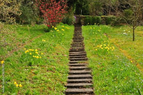 Tuinposter Weg in bos endlose Treppen durch eine Wiese