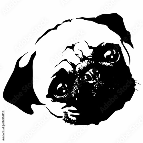 Poster Draw Pug Puppy Dog Portrait Black and White Vector