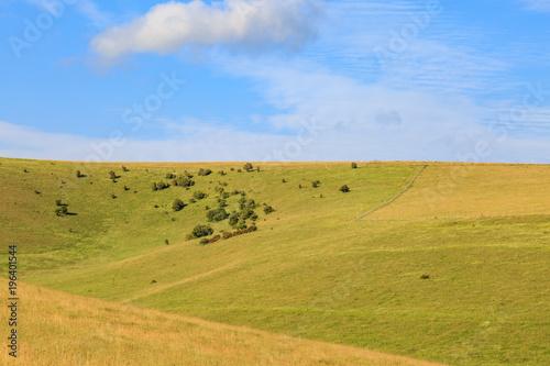 Foto op Canvas Honing Green Hilly Landscape