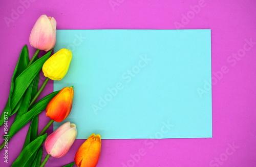 Leinwanddruck Bild red and pink tulips. flower background