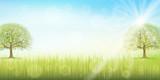 草原 空 風景 背景 - 196434719