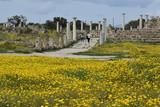 Salamis ruins Cyprus