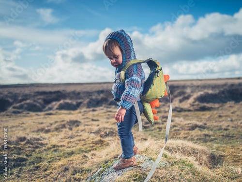 Little boy standing on the moor