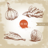 Hand drawn sketch spices set. Garlic, ginger root, bay leaves bunch and nutmeg. Herbs, condiments and spices vector illustration isolated on old background. - 196483524