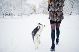 Red haired girl walking at park with husky dog on winter day.