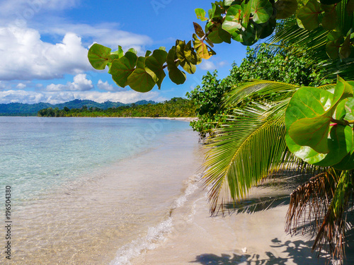 Fotobehang Tropical strand Beach in Cahuita National Park, Caribbean Coast, Costa Rica