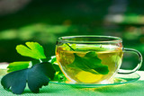 Glass of Herbaceous Tea with Ginkgo Leaves - 196515560