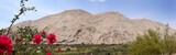 Chiriba desert. Ilo peru