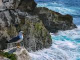 Portugal tem um litoral com muitos quilômetros de lindas praias