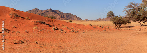 Plexiglas Baksteen Namib-Naukluft Nationalpark