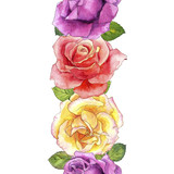 seamless pattern with watercolor drawing roses