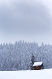 Wooden barn on Romanian mountains at winter - 196611936