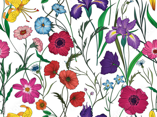 Wall mural Beautiful seamless floral pattern . Flower vector illustration. Field of flowers