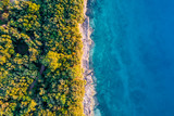 Coastal area with blue clear water and forest on land - aerial view taken by drone - 196624389