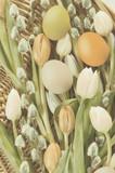 Fototapeta Tulips - ozdoba na stół WielkanocnyWielkanoc, bazie, kartka świąteczna, jajka, pisanki, tradycja, bukiet, świeże kwiaty, wiązanka świąteczna, życzenia © Ansza
