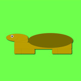 Turtle on the green background