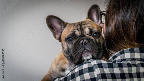 Staande foto Franse bulldog Person holding french bulldog