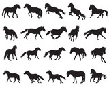 Set of isolated horses silhouettes-3 - 196695135