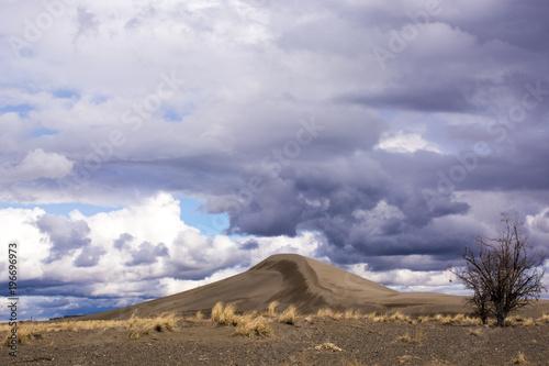 Fotobehang Lavendel Idaho Bruneau sand dune