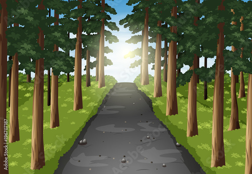 Foto op Aluminium Chocoladebruin Background scene of road in the forest