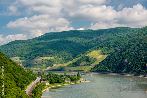Plexiglas Groen blauw Vineyards at Rhine Valley in Germany