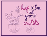 illustration of orchid flowers and calligraphy quote keep calm and grow orchids.